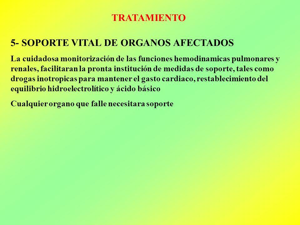 TRATAMIENTO 5- SOPORTE VITAL DE ORGANOS AFECTADOS La cuidadosa monitorización de las funciones hemodinamicas pulmonares y renales, facilitaran la pron
