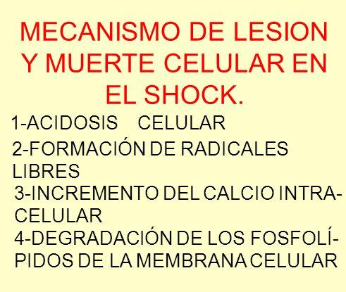 MECANISMO DE LESION Y MUERTE CELULAR EN EL SHOCK. 1-ACIDOSIS CELULAR 2-FORMACIÓN DE RADICALES LIBRES 3-INCREMENTO DEL CALCIO INTRA- CELULAR 4-DEGRADAC