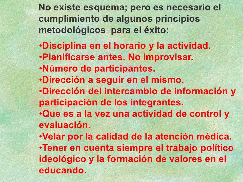 No existe esquema; pero es necesario el cumplimiento de algunos principios metodológicos para el éxito: Disciplina en el horario y la actividad. Plani