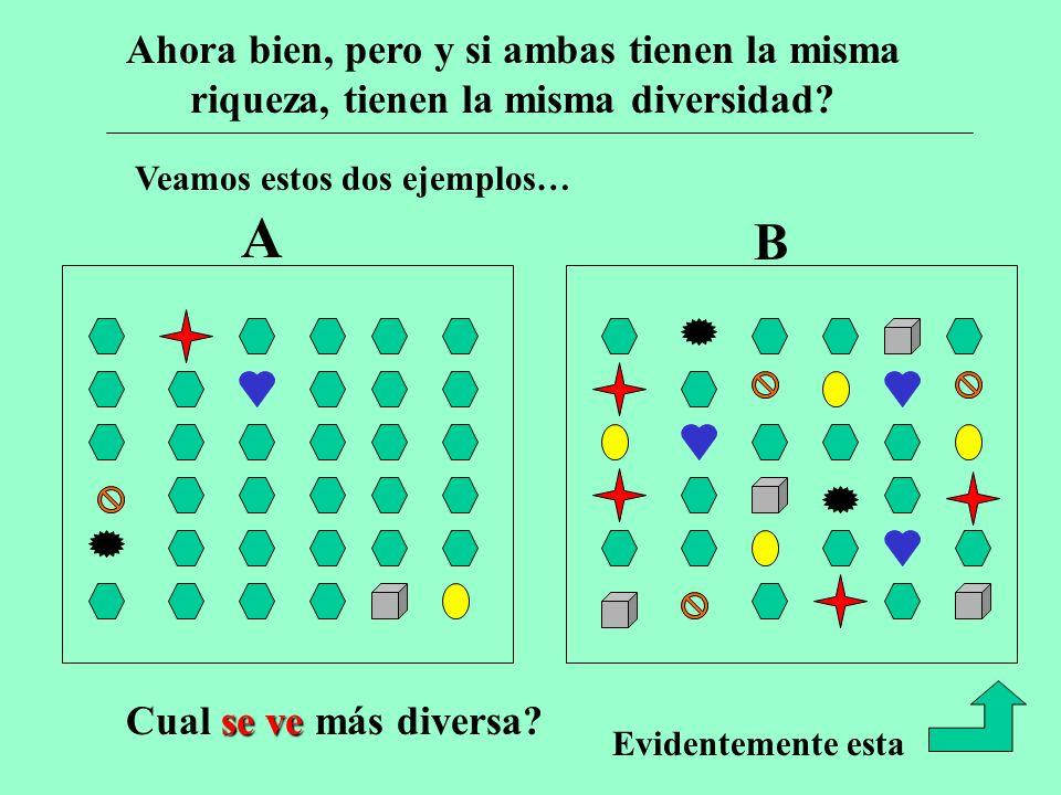 Veamos estos dos ejemplos… A B Sin embargo vean: Ahora bien, pero y si ambas tienen la misma riqueza, tienen la misma diversidad.