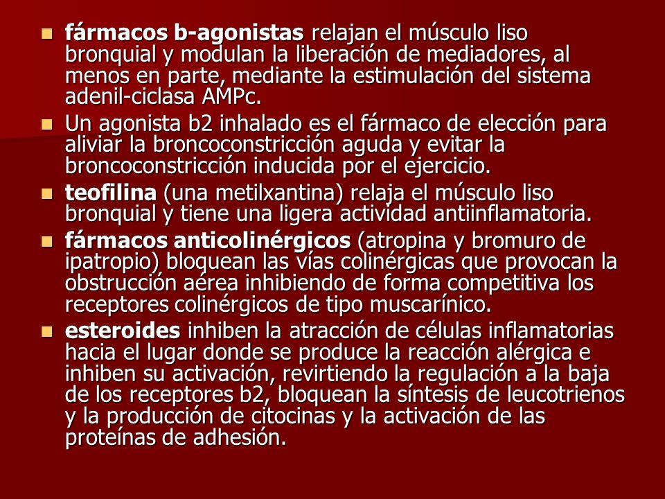 fármacos b-agonistas relajan el músculo liso bronquial y modulan la liberación de mediadores, al menos en parte, mediante la estimulación del sistema
