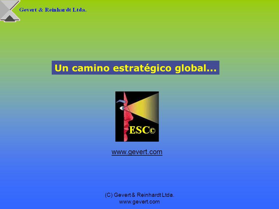(C) Gevert & Reinhardt Ltda. www.gevert.com Un camino estratégico global... www.gevert.com