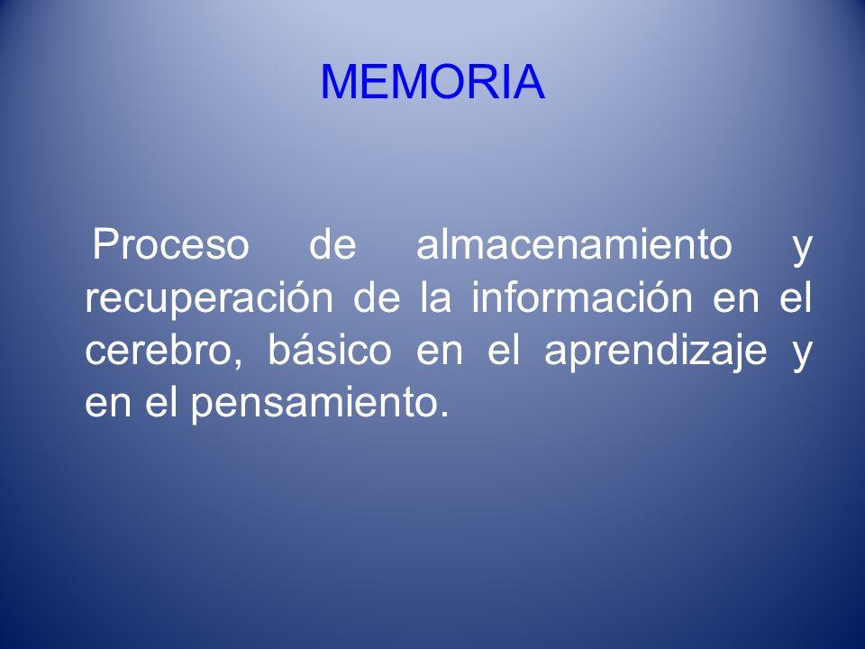 MEMORIA Proceso de almacenamiento y recuperación de la información en el cerebro, básico en el aprendizaje y en el pensamiento.