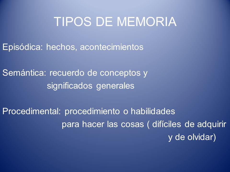 TIPOS DE MEMORIA Episódica: hechos, acontecimientos Semántica: recuerdo de conceptos y significados generales Procedimental: procedimiento o habilidad