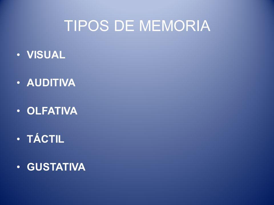 TIPOS DE MEMORIA VISUAL AUDITIVA OLFATIVA TÁCTIL GUSTATIVA