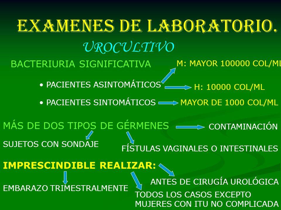 EXAMENES DE LABORATORIO. UROCULTIVO BACTERIURIA SIGNIFICATIVA PACIENTES ASINTOMÁTICOS M: MAYOR 100000 COL/ML H: 10000 COL/ML PACIENTES SINTOMÁTICOSMAY
