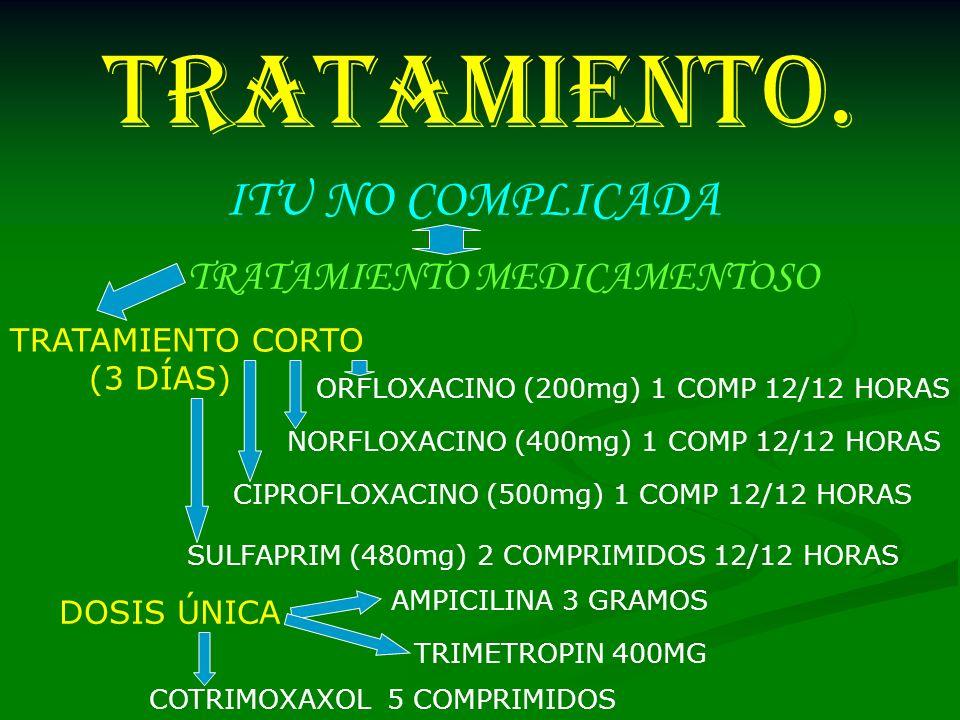 TRATAMIENTO. TRATAMIENTO MEDICAMENTOSO SULFAPRIM (480mg) 2 COMPRIMIDOS 12/12 HORAS NORFLOXACINO (400mg) 1 COMP 12/12 HORAS CIPROFLOXACINO (500mg) 1 CO