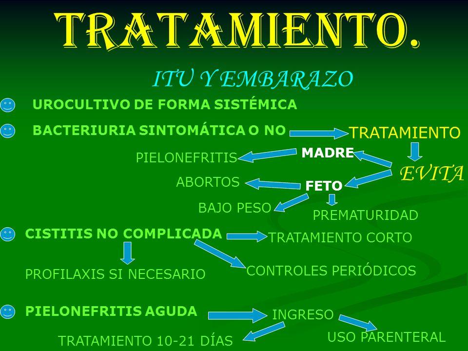 TRATAMIENTO. UROCULTIVO DE FORMA SISTÉMICA BACTERIURIA SINTOMÁTICA O NO TRATAMIENTO EVITA MADRE PIELONEFRITIS FETO ABORTOS BAJO PESO PREMATURIDAD CIST