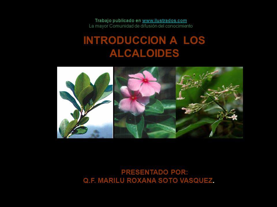 INTRODUCCION A LOS ALCALOIDES PRESENTADO POR: Q.F. MARILU ROXANA SOTO VASQUEZ. Trabajo publicado en www.ilustrados.comwww.ilustrados.com La mayor Comu