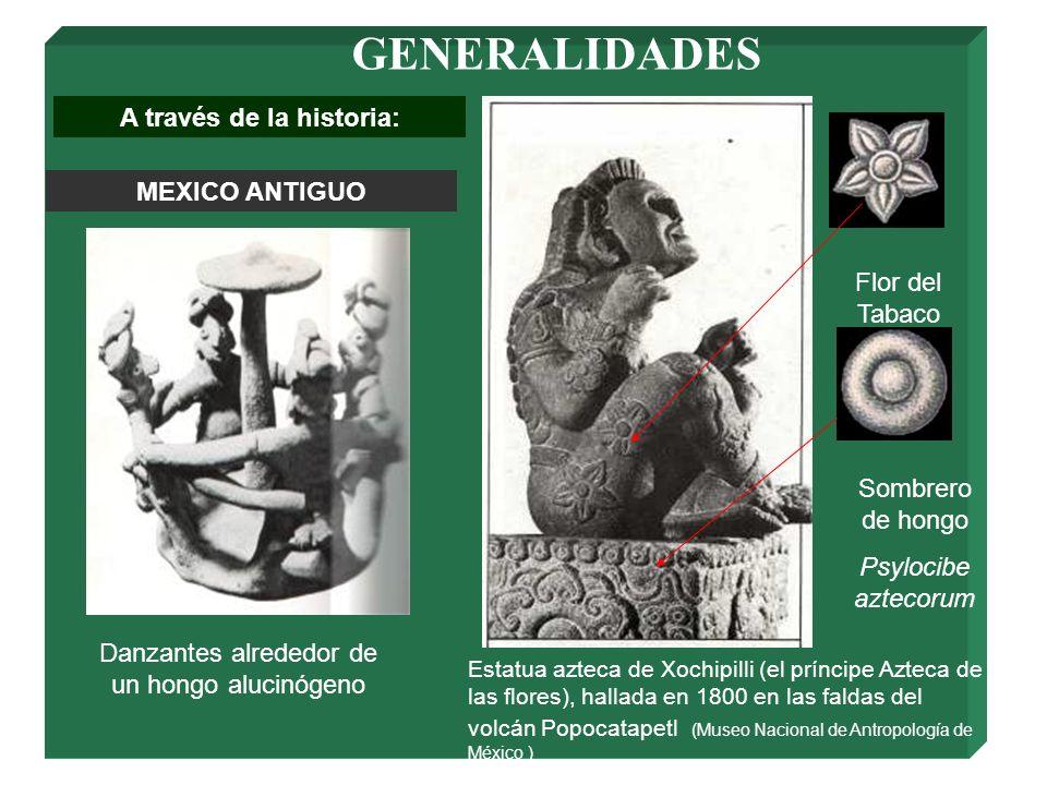 GENERALIDADES A través de la historia: MEXICO ANTIGUO Sombrero de hongo Psylocibe aztecorum Flor del Tabaco Danzantes alrededor de un hongo alucinógen
