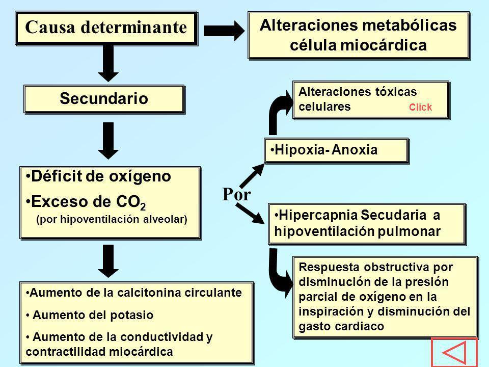 Causa determinante Alteraciones metabólicas célula miocárdica Secundario Déficit de oxígeno Exceso de CO 2 (por hipoventilación alveolar) Déficit de o