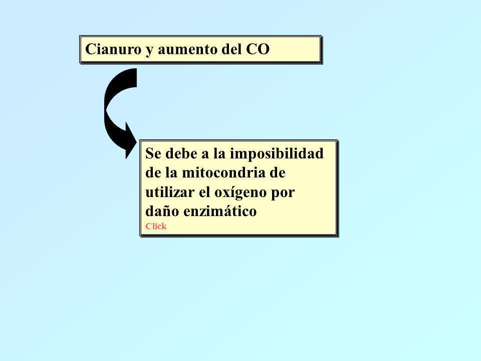 Cianuro y aumento del CO Se debe a la imposibilidad de la mitocondria de utilizar el oxígeno por daño enzimático Click Se debe a la imposibilidad de l