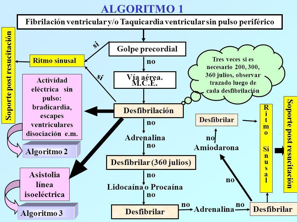 ALGORITMO 1 Fibrilación ventricular y/o Taquicardia ventricular sin pulso periférico Golpe precordial si no Ritmo sinusal Soporte post resucitación Ví