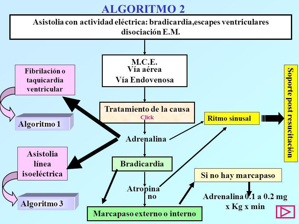 ALGORITMO 2 Asistolia con actividad eléctrica: bradicardia,escapes ventriculares disociación E.M. Ritmo sinusal M.C.E. Vía aérea Vía Endovenosa Tratam