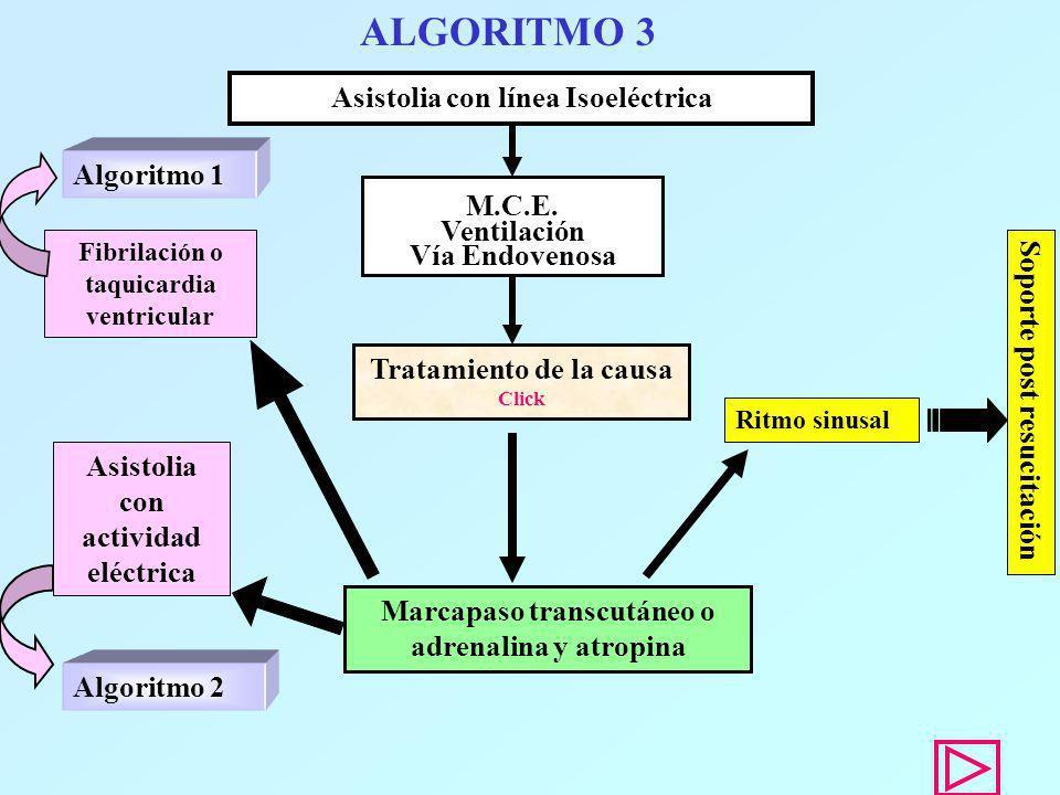 ALGORITMO 3 Asistolia con línea Isoeléctrica Ritmo sinusal M.C.E. Ventilación Vía Endovenosa Tratamiento de la causa Click Marcapaso transcutáneo o ad