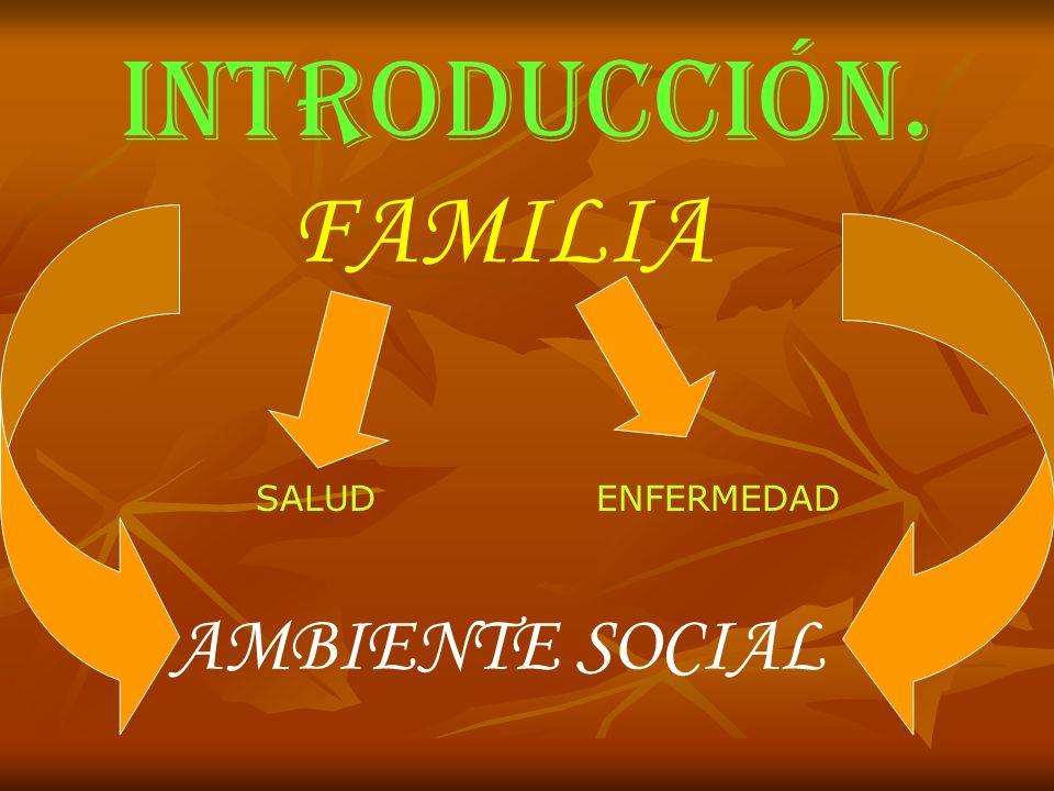 INTRODUCCIÓN. FAMILIA SALUDENFERMEDAD AMBIENTE SOCIAL