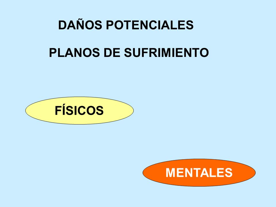 DAÑOS POTENCIALES FÍSICOS MENTALES PLANOS DE SUFRIMIENTO
