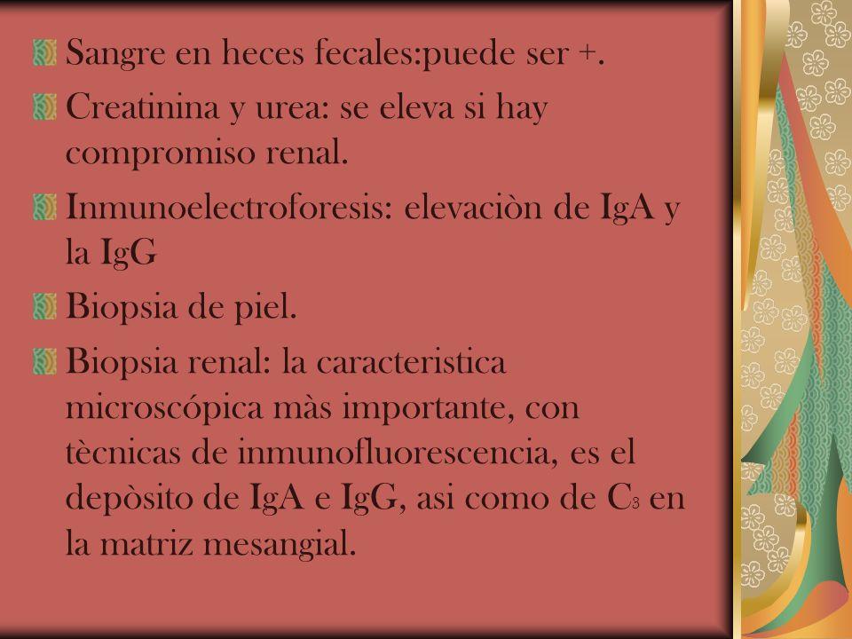 Sangre en heces fecales:puede ser +. Creatinina y urea: se eleva si hay compromiso renal. Inmunoelectroforesis: elevaciòn de IgA y la IgG Biopsia de p