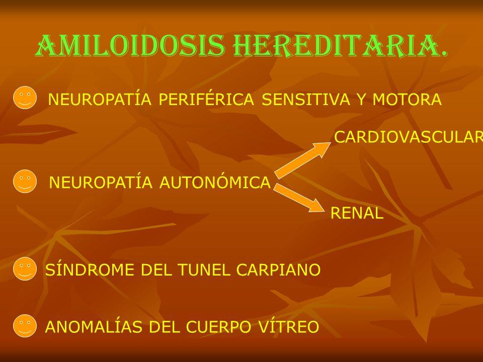 AMILOIDOSIS HEREDITARIA. NEUROPATÍA PERIFÉRICA SENSITIVA Y MOTORA NEUROPATÍA AUTONÓMICA CARDIOVASCULAR RENAL SÍNDROME DEL TUNEL CARPIANO ANOMALÍAS DEL