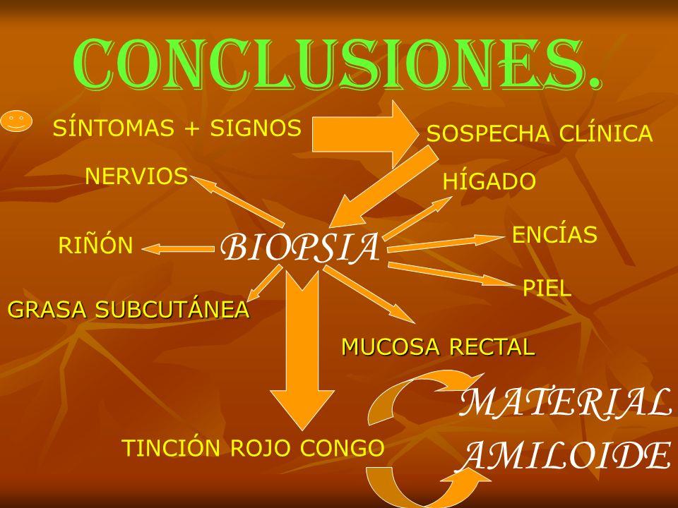 CONCLUSIONES. SÍNTOMAS + SIGNOS SOSPECHA CLÍNICA NERVIOS RIÑÓN BIOPSIA HÍGADO ENCÍAS PIEL MUCOSA RECTAL GRASA SUBCUTÁNEA TINCIÓN ROJO CONGO MATERIAL A