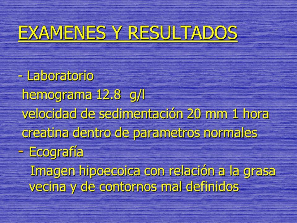 EXAMENES Y RESULTADOS - Laboratorio hemograma 12.8 g/l hemograma 12.8 g/l velocidad de sedimentación 20 mm 1 hora velocidad de sedimentación 20 mm 1 h