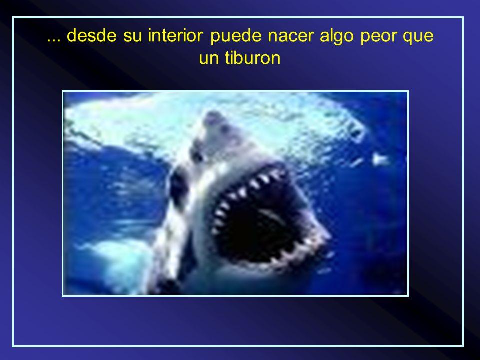 ... desde su interior puede nacer algo peor que un tiburon