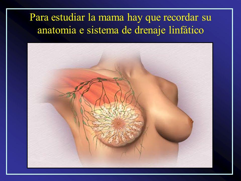 Para estudiar imagenologicamente las mamas debe realizarse: Un buen interrogatório Un buen exáme físico Una ecografia Una mamografia En la actualidad en los países con gran desarrollo se utiliza la IMR (Resonancia Magnetica por Imagenes)