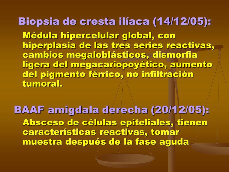 Biopsia de cresta ilíaca (14/12/05): Médula hipercelular global, con hiperplasia de las tres series reactivas, cambios megaloblásticos, dismorfia ligera del megacariopoyético, aumento del pigmento férrico, no infiltración tumoral.