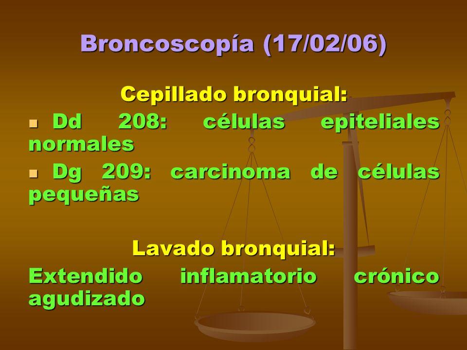 Broncoscopía (17/02/06) Cepillado bronquial: Dd 208: células epiteliales normales Dd 208: células epiteliales normales Dg 209: carcinoma de células pequeñas Dg 209: carcinoma de células pequeñas Lavado bronquial: Extendido inflamatorio crónico agudizado