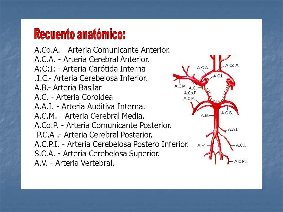 A.Co.A. - Arteria Comunicante Anterior. A.C.A. - Arteria Cerebral Anterior. A:C:I: - Arteria Carótida Interna.I.C.- Arteria Cerebelosa Inferior. A.B.-