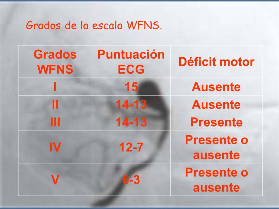 Grados WFNS Puntuación ECG Déficit motor I15Ausente II14-13Ausente III14-13Presente IV12-7 Presente o ausente V6-3 Presente o ausente Grados de la esc