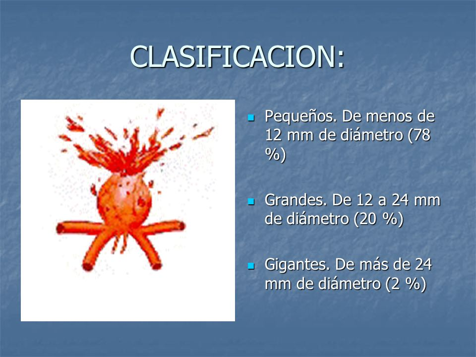 CLASIFICACION: Pequeños. De menos de 12 mm de diámetro (78 %) Pequeños. De menos de 12 mm de diámetro (78 %) Grandes. De 12 a 24 mm de diámetro (20 %)