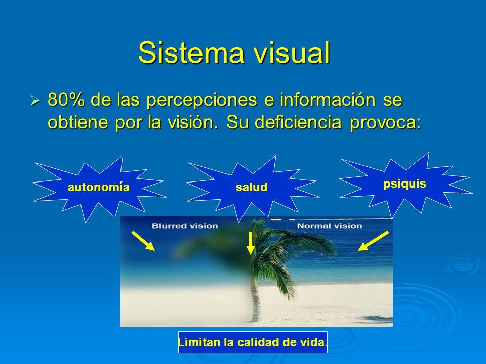 Sistema visual 80% de las percepciones e información se obtiene por la visión. Su deficiencia provoca: 80% de las percepciones e información se obtien