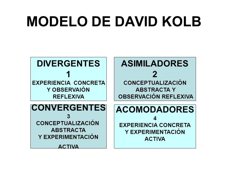 MODELO DE DAVID KOLB DIVERGENTES 1 EXPERIENCIA CONCRETA Y OBSERVAIÓN REFLEXIVA ASIMILADORES 2 CONCEPTUALIZACIÓN ABSTRACTA Y OBSERVACIÓN REFLEXIVA CONV