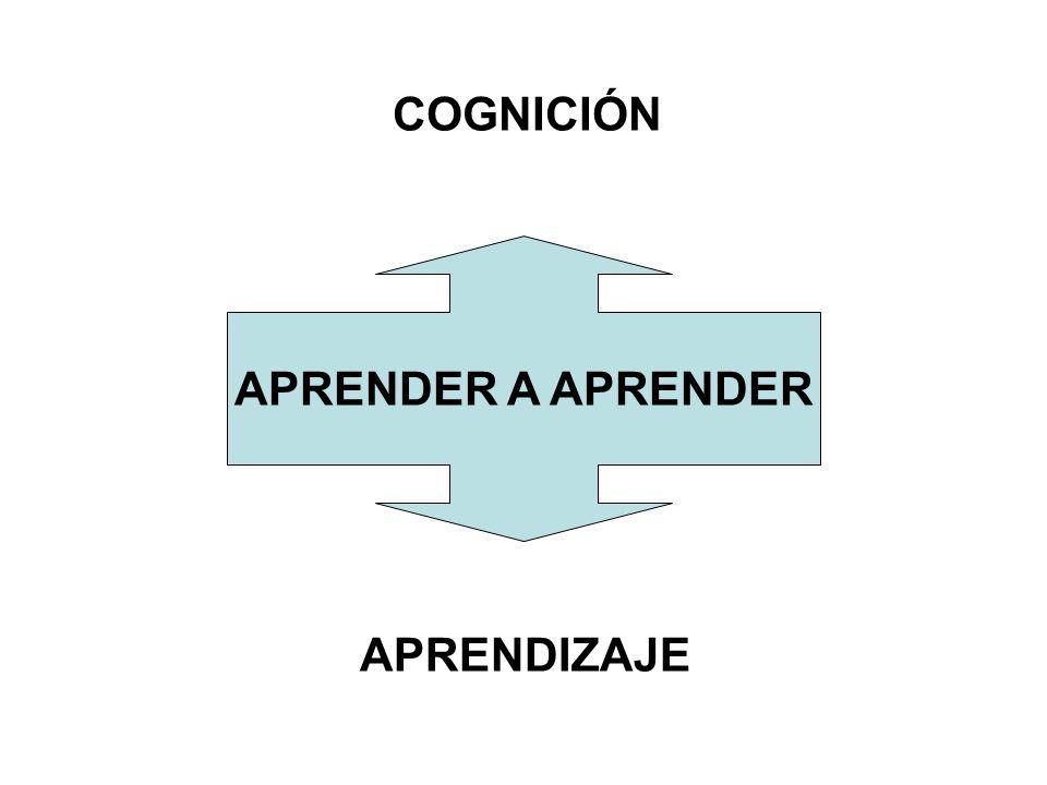 Comparar Clasificar Inducir Deducir Analizar errores Establecer y elaborar fundamentos Analizar perspectivas Crear y aplicar abstracciones