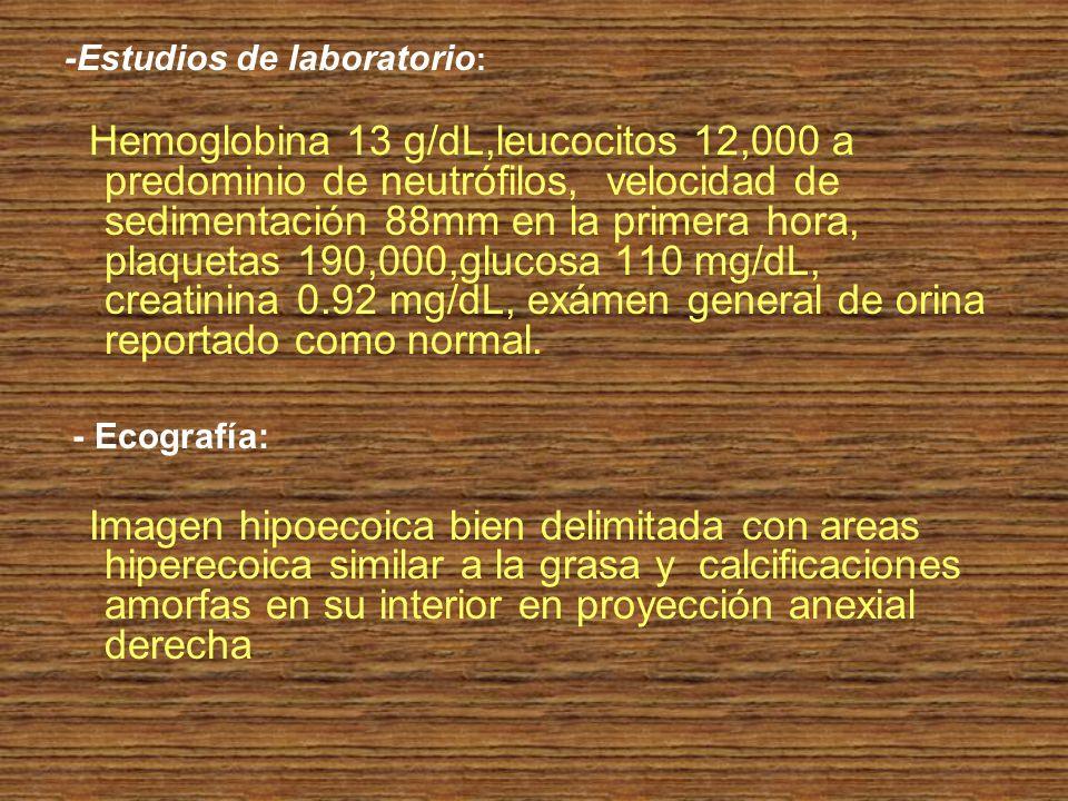 -Estudios de laboratorio : Hemoglobina 13 g/dL,leucocitos 12,000 a predominio de neutrófilos, velocidad de sedimentación 88mm en la primera hora, plaq