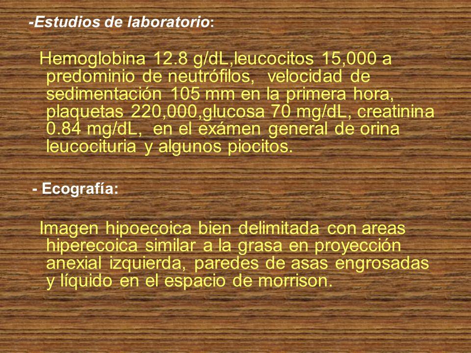-Estudios de laboratorio : Hemoglobina 12.8 g/dL,leucocitos 15,000 a predominio de neutrófilos, velocidad de sedimentación 105 mm en la primera hora,