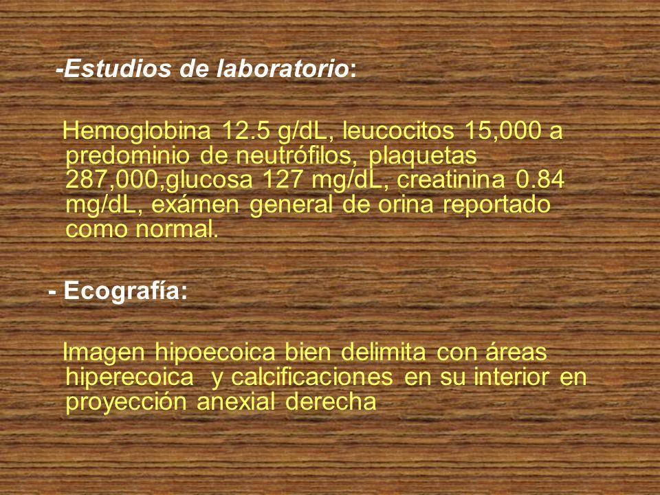 -Estudios de laboratorio: Hemoglobina 12.5 g/dL, leucocitos 15,000 a predominio de neutrófilos, plaquetas 287,000,glucosa 127 mg/dL, creatinina 0.84 m