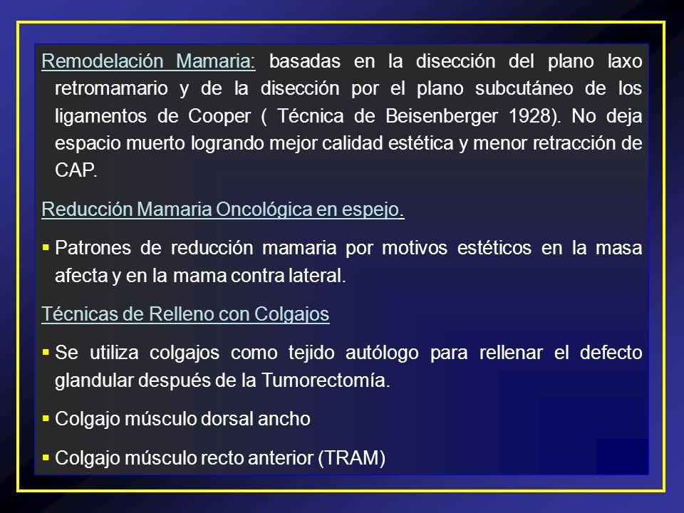 Remodelación Mamaria: basadas en la disección del plano laxo retromamario y de la disección por el plano subcutáneo de los ligamentos de Cooper ( Técn