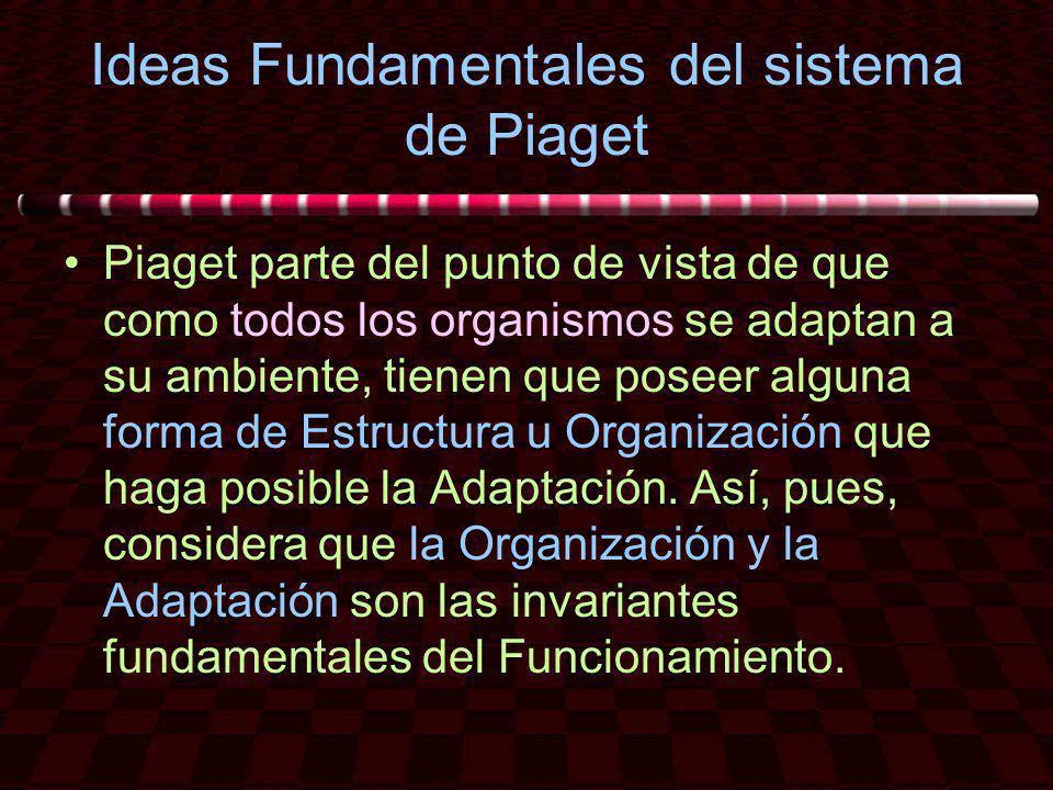 Ideas Fundamentales del sistema de Piaget Piaget parte del punto de vista de que como todos los organismos se adaptan a su ambiente, tienen que poseer