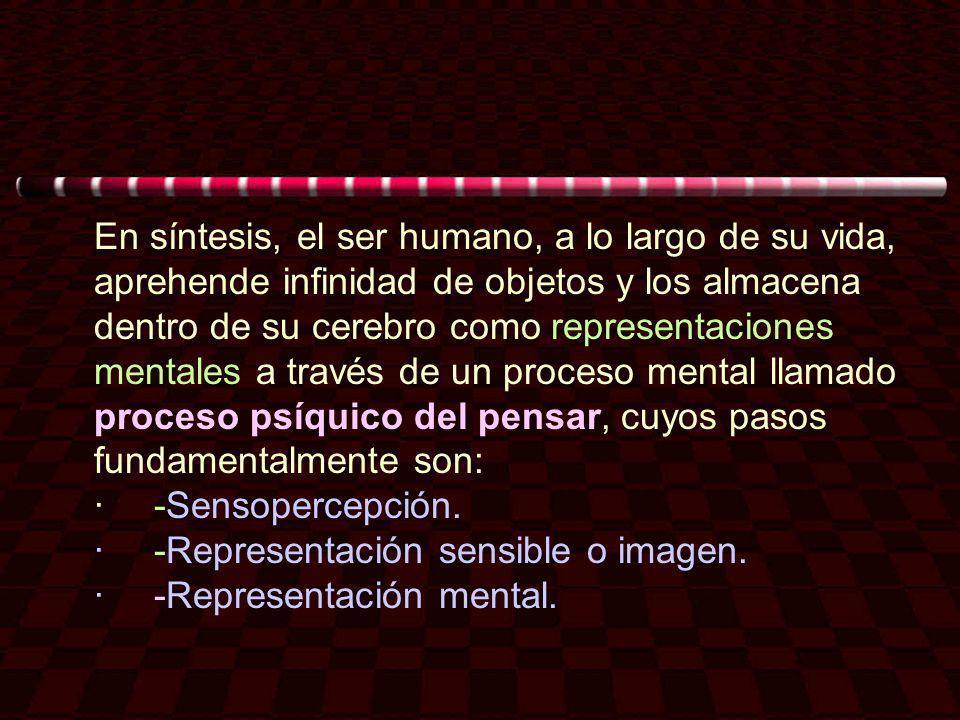En síntesis, el ser humano, a lo largo de su vida, aprehende infinidad de objetos y los almacena dentro de su cerebro como representaciones mentales a