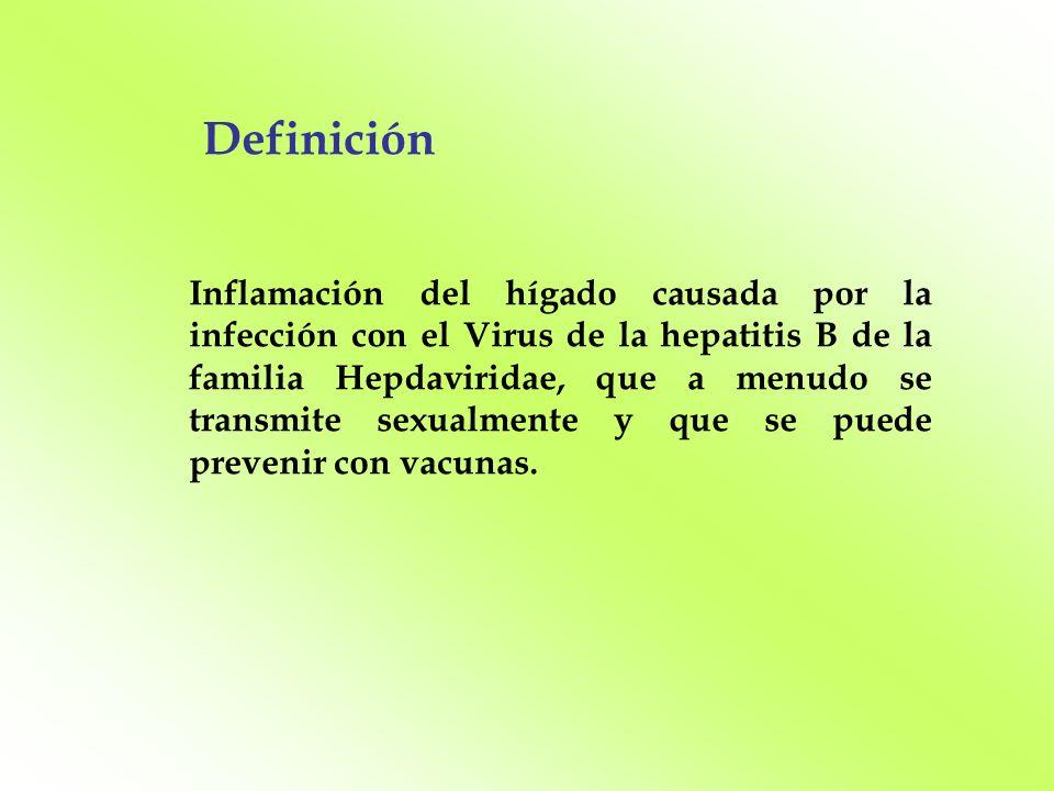 Definición Inflamación del hígado causada por la infección con el Virus de la hepatitis B de la familia Hepdaviridae, que a menudo se transmite sexual