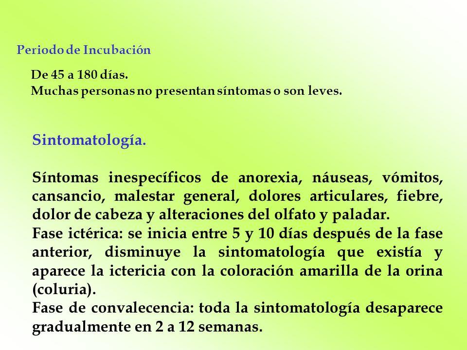Sintomatología. Síntomas inespecíficos de anorexia, náuseas, vómitos, cansancio, malestar general, dolores articulares, fiebre, dolor de cabeza y alte