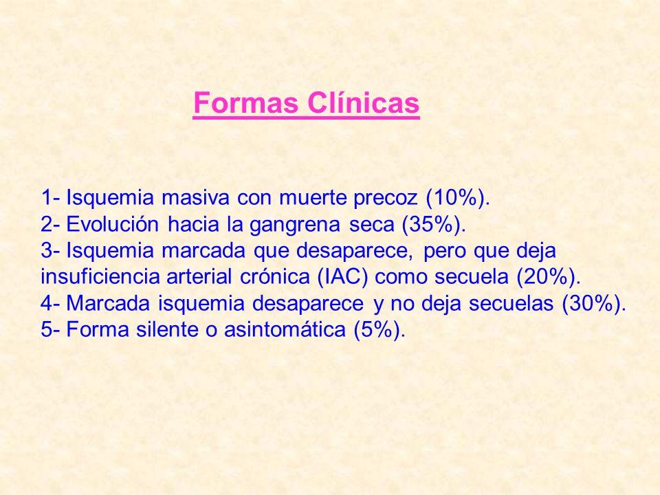 Formas Clínicas 1- Isquemia masiva con muerte precoz (10%). 2- Evolución hacia la gangrena seca (35%). 3- Isquemia marcada que desaparece, pero que de