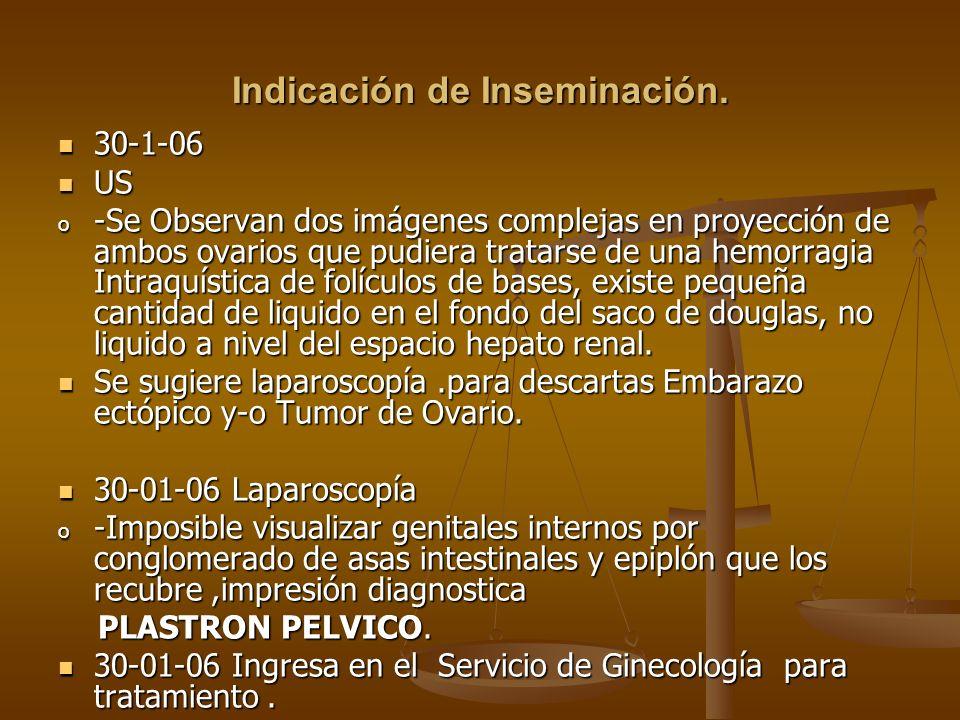 Indicación de Inseminación. 30-1-06 30-1-06 US US o -Se Observan dos imágenes complejas en proyección de ambos ovarios que pudiera tratarse de una hem