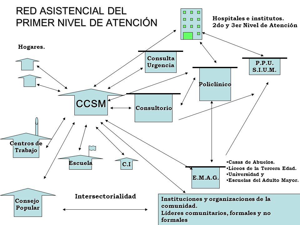 Programa CCSM REHABILITACIÓN Características de los grupos de rehabilitación para pacientes con Demencia: Deben ser pequeños: 3 a 6 personas Supervisión profesional Duración de las sesiones no mayor de 30 a 45 minutos.