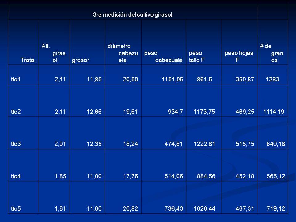 3ra medición del cultivo girasol Trata. Alt. giras olgrosor diámetro cabezu ela peso cabezuela peso tallo F peso hojas F # de gran os tto12,1111,8520,
