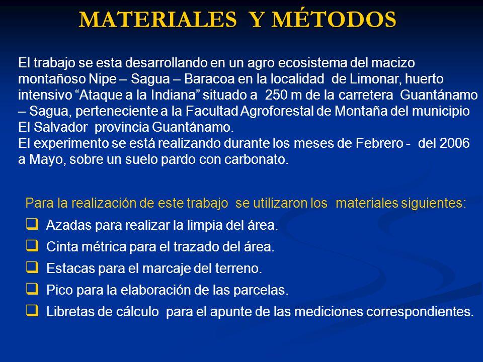 MATERIALES Y MÉTODOS El trabajo se esta desarrollando en un agro ecosistema del macizo montañoso Nipe – Sagua – Baracoa en la localidad de Limonar, hu