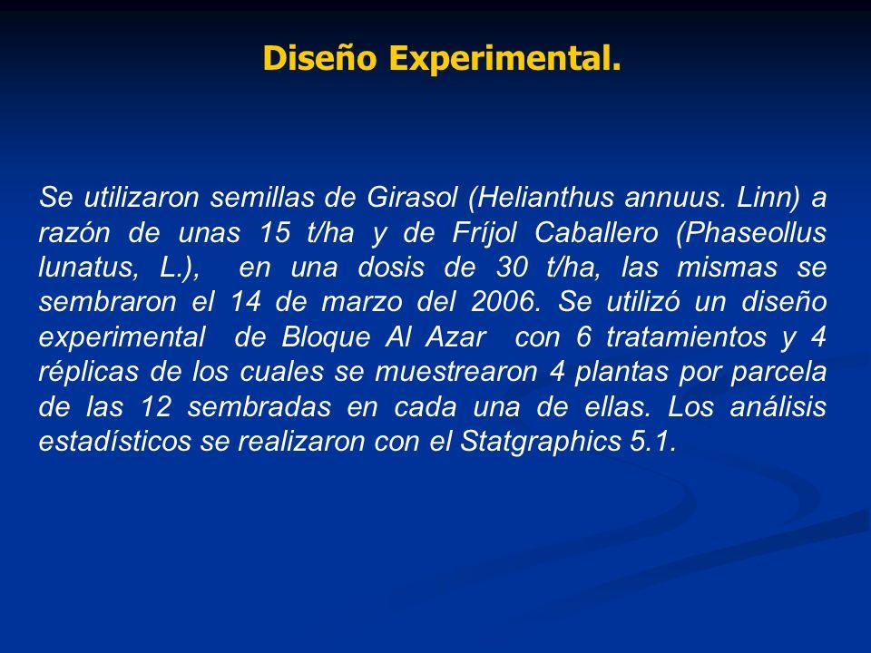 Diseño Experimental. Se utilizaron semillas de Girasol (Helianthus annuus. Linn) a razón de unas 15 t/ha y de Fríjol Caballero (Phaseollus lunatus, L.