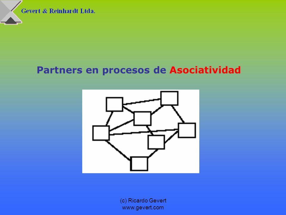 (c) Ricardo Gevert www.gevert.com Partners en procesos de Asociatividad